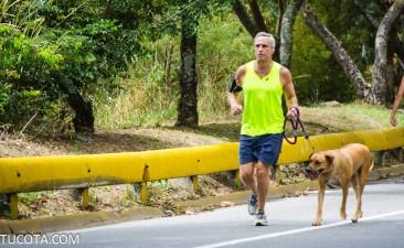 Mascotas de la Cota Mil: El perro crestado rodesiano