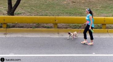 Mascotas de la Cota Mil: El Pug