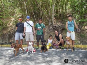 Dueños y Mascotas: Rafael y Kafu,  Yose y Ika, Andres y Conan,  Juan Carlos y Coco, Darlin y Cluster