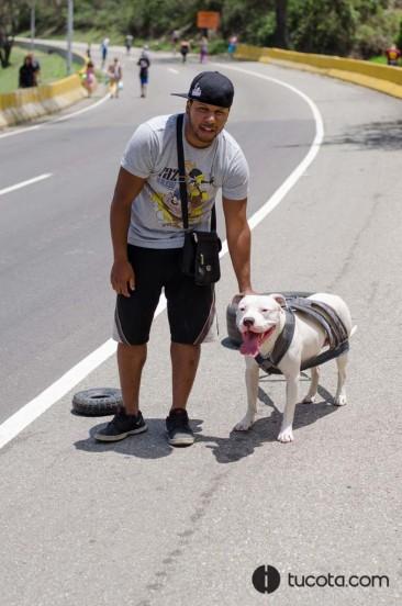 Gerald y Narco el Pitbull blanco